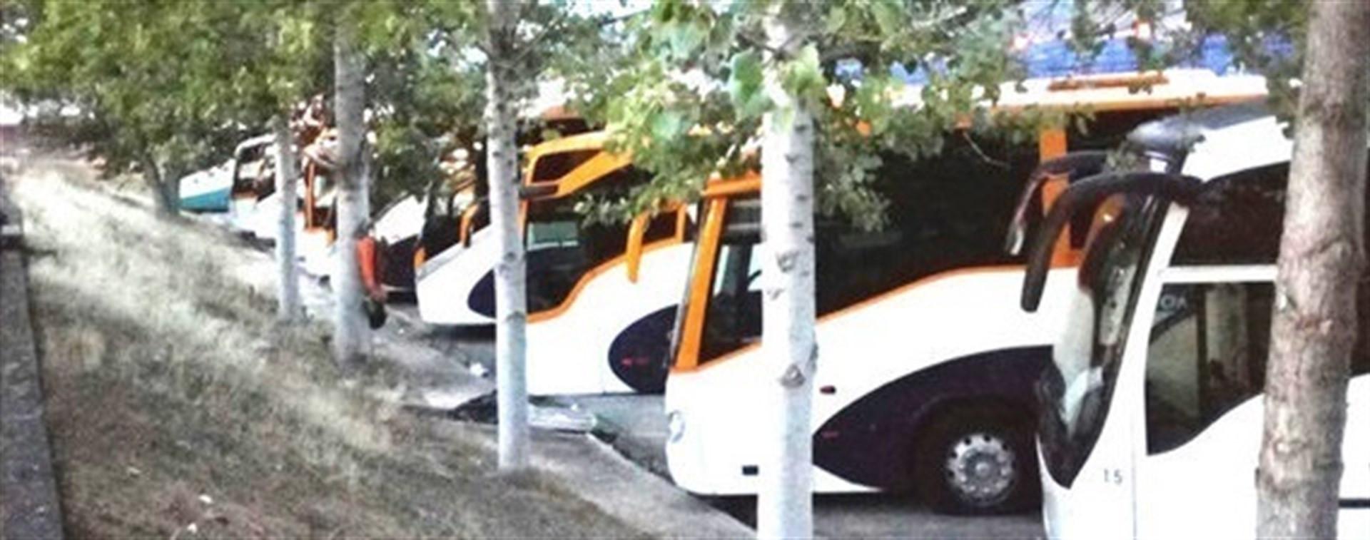 Autobusesaparcados3