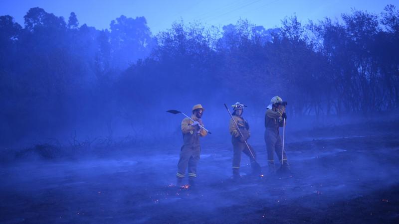 Bomberosforestalesbrigadaextincionincendio