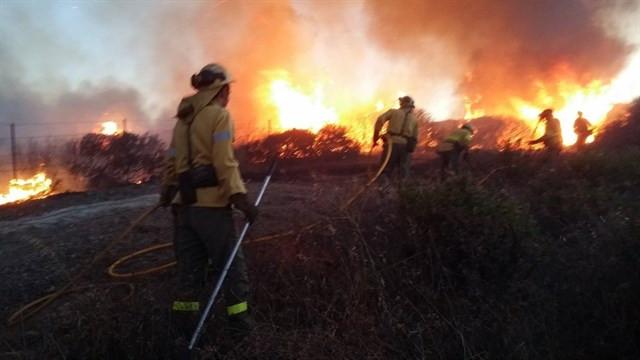 Bomberosforestalesincendio
