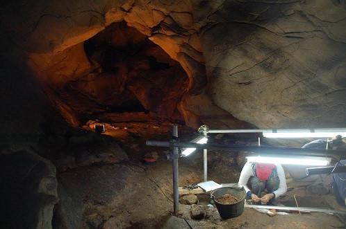 Covaeirosinterior