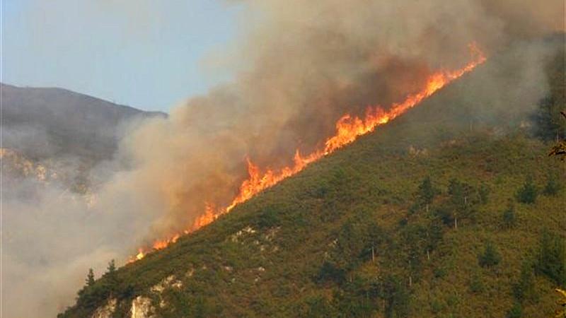Incendioforestalmonte