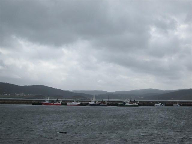Puertobarcos