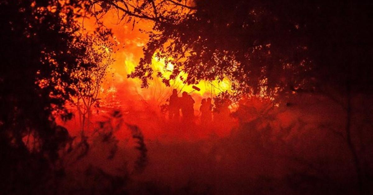 Incendios Fuego