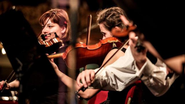 Músicos en concierto