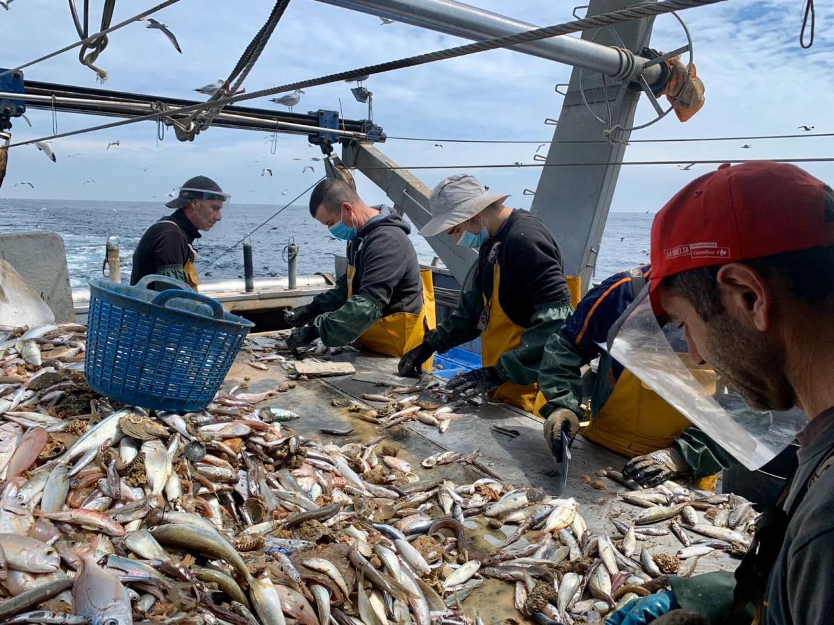 Actividad pesquera en barco pesquero